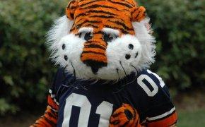 Aubie the Auburn Tiger