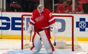 Jimmy Howard, goalie for the Detroit Red Wings
