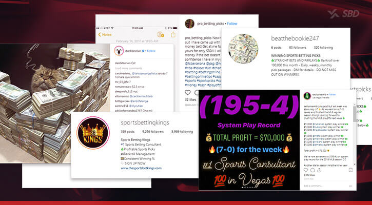 instagram handicappers fraudulent accounts stacks of money inflated win records