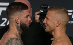 T.J. Dillashaw and Cody Garbrandt face each other for the second time at UFC 227.