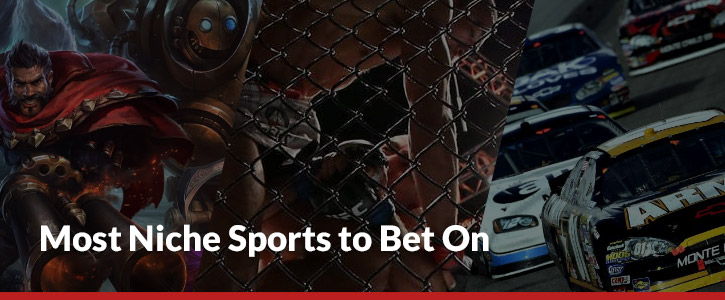 most niche sports to bet on header image cage match nascar