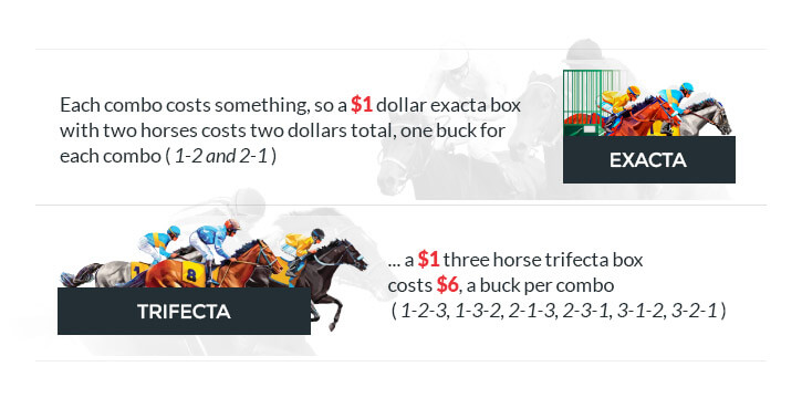exacta and trifecta explained horse racing illustrated animated image