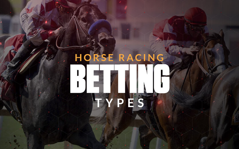 American horse racing betting explained definition laws in sports betting
