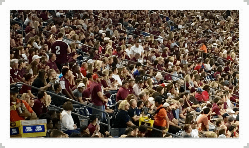 Crowd of people in a stadium
