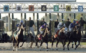 Jeff Ruby Stakes