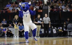 Buffalo mascot dancing