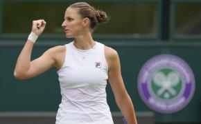 Ashleigh Barty vs Karolina Pliskova