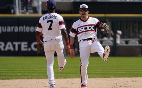 Tim Anderson celebration with Danny Mendick