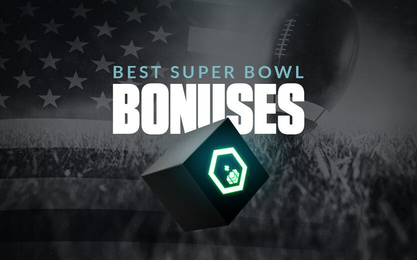 Biggest bet on super bowl best betting odds in vegas