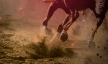 Photo of horses running on a dirt track