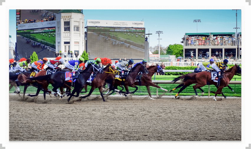 Horses running at the 2014 Kentucky Derby