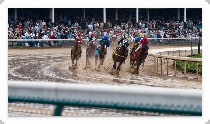 Pack of horses running a race in soggy conditions