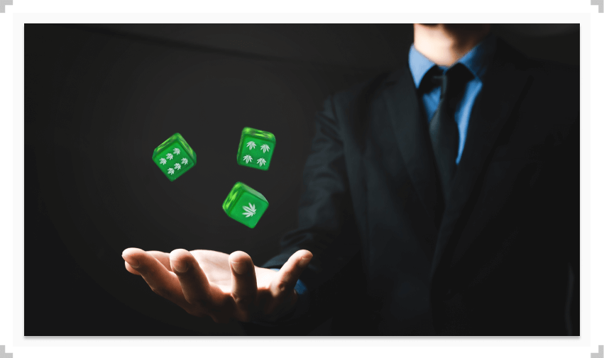 Cannabis on dice being thrown