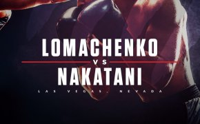 Vasiliy Lomachenko vs Masayoshi Nakatani odds