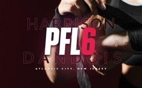 PFL 6 odds - Kayla Harrison vs Cindy Dandois