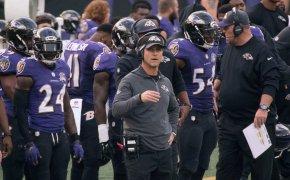 Ravens Coach Harbaugh