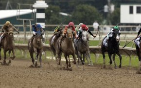 Cotillion Stakes