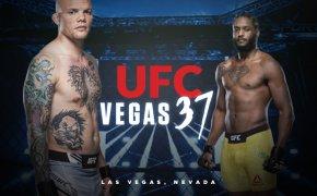 UFC Vegas 37 odds - Anthony Smith vs Ryan Spann