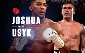 Anthony Joshua vs Oleksandr Usyk odds