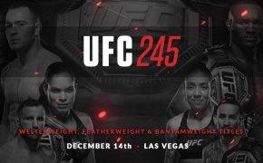 UFC 245 promotional poster