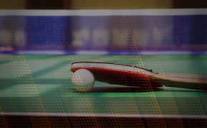 table tennis paddle, ball and net