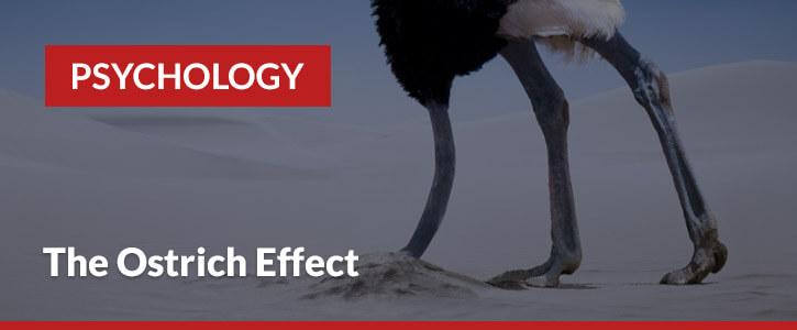 betting psychology the ostrich effect header