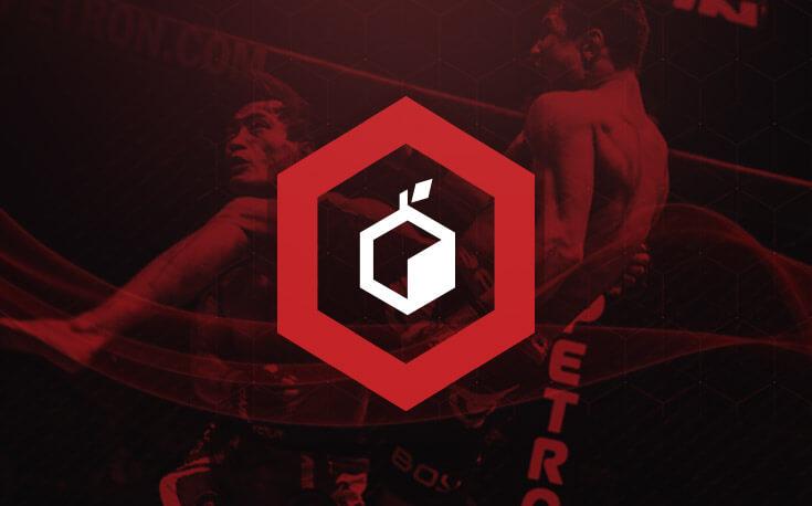 MMA betting icon