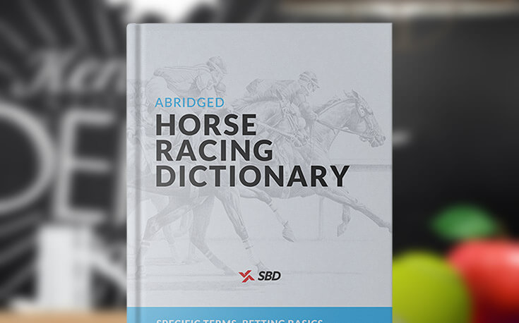 horse racing dictionary sbd book
